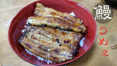 【チートデイ】炭水化物(鰻丼)たくさん食べた翌日は流石に太るって【ダイエット】
